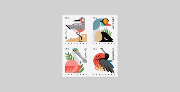 coastal_birds_usps_1240